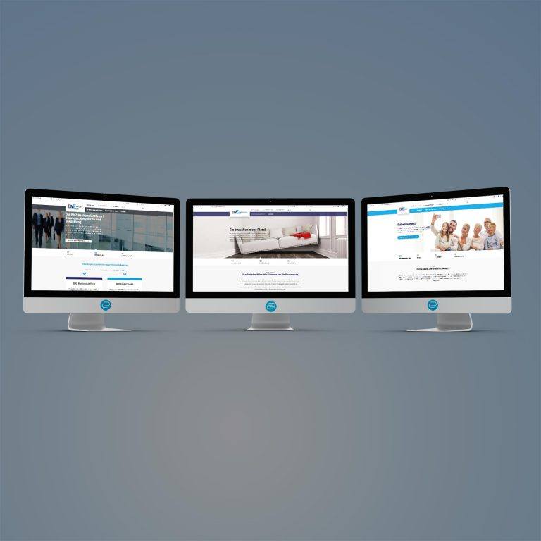 Website für die BMZ Group